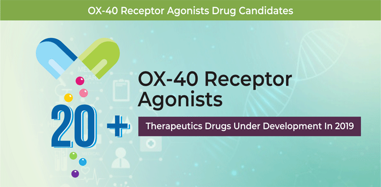 OX40 Receptor Agonists